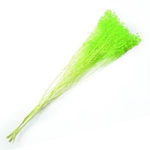 ドライフラワー 花材 ブルーム ライトグリーン 小分け約1/3〜1/4袋 solargift