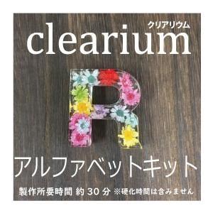 クリアリウム 固まるハーバリウム キット アルファベット キット レジン