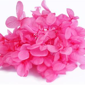 プリザーブドフラワー アジサイ 花材 フラミンゴ 小分け約4g|solargift