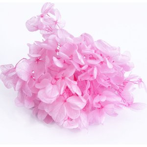 プリザーブドフラワー 花材 アジサイ ピンク 小分け約4g|solargift