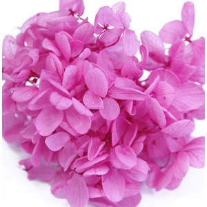 プリザーブドフラワー アジサイ 花材 ローズピンク 小分け約4g|solargift