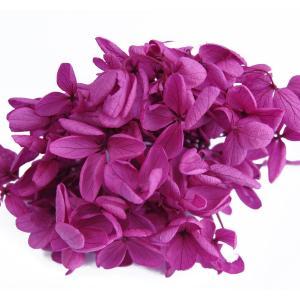 プリザーブドフラワー アジサイ 花材 ワインレッド 小分け約4g|solargift