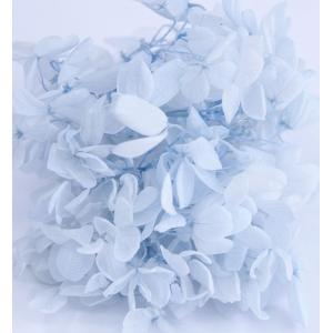 プリザーブドフラワー 花材 アジサイ アイスブルー 小分け約4g|solargift