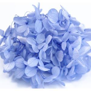 プリザーブドフラワー 花材 アジサイ パールブルー 小分け約4g|solargift
