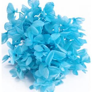 プリザーブドフラワー アジサイ 花材 スカイブルー 小分け約4gの画像