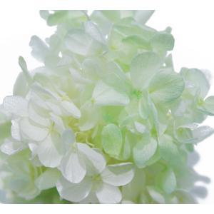 プリザーブドフラワー 花材 アジサイ グリーンミックス 小分け約4g|solargift