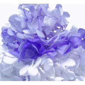 プリザーブドフラワー 花材 アジサイ パープルミックス 小分け約4g|solargift