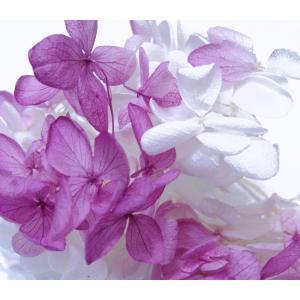 プリザーブドフラワー 花材 アジサイ ローズミックス 小分け約4g|solargift