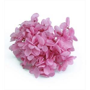 プリザーブドフラワー 花材 箱 Nアジサイ ローズピンク 約22g|solargift