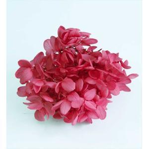 プリザーブドフラワー 花材 箱 Nアジサイ レッド 約22g|solargift