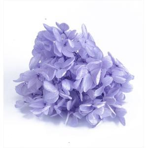 プリザーブドフラワー 花材 箱 Nアジサイ ラベンダー 約22g|solargift
