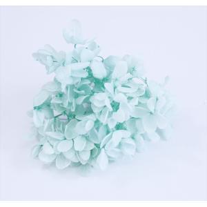 プリザーブドフラワー 花材 箱 Nアジサイ アイスグリーン 約22g|solargift