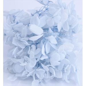 プリザーブドフラワー 花材 箱 Nアジサイ アイスブルー 約22g|solargift