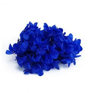 プリザーブドフラワー 花材 箱 Nアジサイ ロイヤルブルー 約22g|solargift