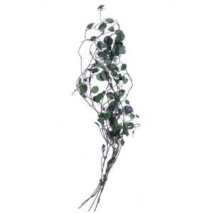 ワイヤープランツ グリーン 小分け spps0006 そらプリ プリザーブド 花材 グリーン 大地農園|solargift