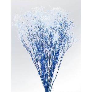 かすみ草 プリザーブドフラワー ミニカスミソウ フラワーベール 白/ブルー 小分け|solargift