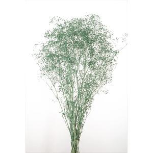 かすみ草 プリザーブドフラワー 花材 ソフトミニ カスミソウ ターコイズ 小分け そらプリの画像