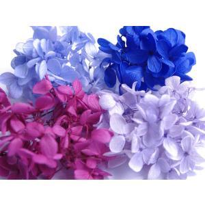 あじさいの少量小分け4色パックです。 新鮮な花材を厳選し、小分け、パッキングしております。 アクセサ...