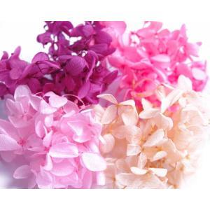 そらプリ プリザーブドフラワー 花材 アジサイ 小分け4色 ピンク系ミックス 福袋|solargift