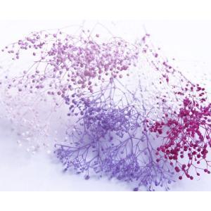プリザーブドフラワー 福袋 カスミ草 小分け 5色 セットH ピンク系ミックス|solargift