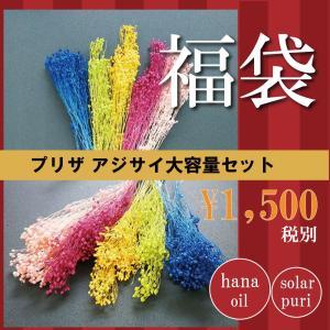 ドライフラワー 花材セット ブルーム 5色アソート