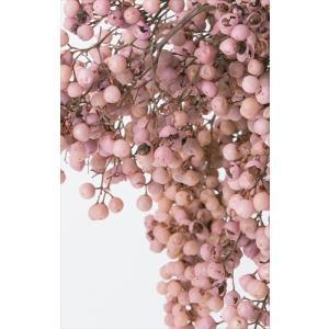プリザーブド 花材 ペッパーベリー ベビーピンク 小分け約10g そらプリ|solargift