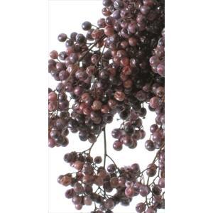 プリザーブド 花材 ペッパーベリー パープル 小分け約10g そらプリ|solargift