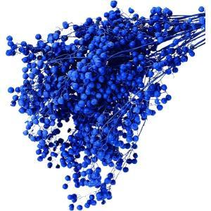 プリザーブド 花材 ペッパーベリー ウォッシュブルー 小分け約10g そらプリ|solargift