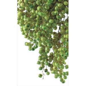 プリザーブド 花材 プリザーブド ライトグリーン 小分け約10g そらプリ|solargift