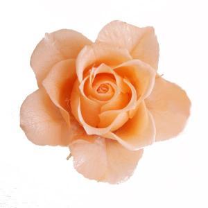 プリザーブドフラワー 材料 花材 開花バラ Sサイズ ピーチ 小分け 1輪 プリザーブドフラワー|solargift
