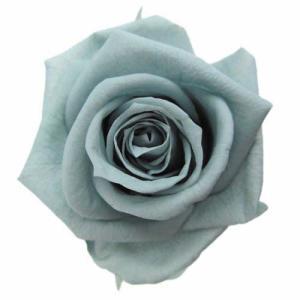 スタンダードローズ ミストグリーン 小分け 1輪入 プリザーブドフラワー 材料 花材|solargift