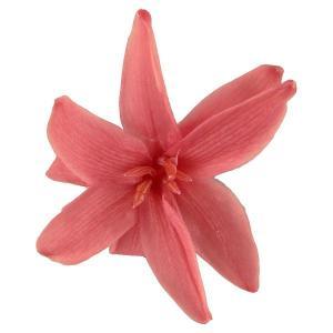 チューベローズ ピンクオパール 小分け 2輪入 プリザーブドフラワー 材料 花材 フロールエバー|solargift