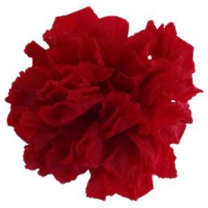 スタンダードカーネーション チェリーレッド 小分け 1輪入 プリザーブドフラワー 材料 花材|solargift