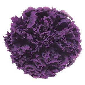 スタンダードカーネーション バイオレット 小分け 1輪入 プリザーブドフラワー 材料 花材|solargift