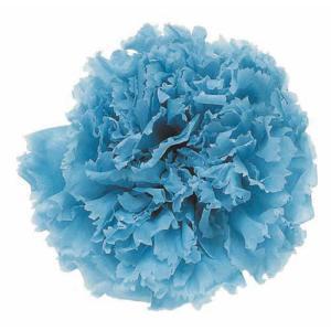 スタンダードカーネーション パウダーブルー 小分け 1輪入 プリザーブドフラワー 材料 花材 |solargift