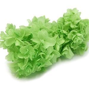 プリザーブドフラワー 花材 材料 ソフトあじさい柏葉 グリーン 小分け|solargift