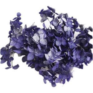 プリザーブドフラワー 材料 花材 ソフトアジサイアナベルスプラッシュ エジプシアン 小分け|solargift