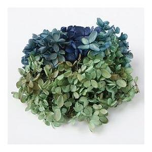 プリザーブドフラワー 花材 x1-lp-64234 ソフトアジサイ水無月 ラベンダー×グリーン 小分け|solargift