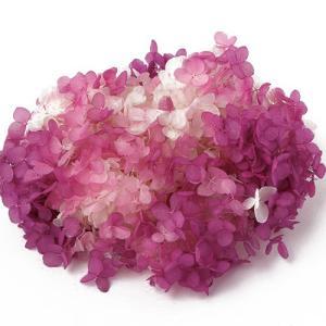 プリザーブドフラワー 花材 アジサイ アナベル パルフェ カシスフロート 小分け 東北花材 TOKA そらプリの画像