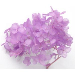 プリザーブドフラワー 花材 材料 ソフトアジサイアナベル パープル 小分け|solargift