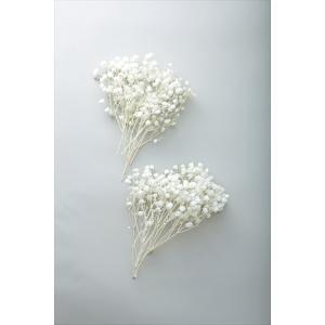 カスミソウ オーバータイム 白 小分け プリザーブドフラワー 材料 花材 かすみ草 大地農園|solargift