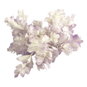 プリザーブドフラワー バラ売り 材料 花材 カシワバ アジサイ ホワイトパープル 小分け あじさい 紫陽花 大地農園|solargift