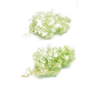 プリザーブドフラワー 花材 カシワバアジサイ ホワイトグリーン 小分けの画像