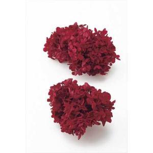 プリザーブドフラワー 花材 ソフトピラミッドアジサイ ヘッド ワインレッド 小分け 約4g|solargift