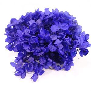 プリザーブドフラワー 花材 アジサイ ソフトピラミッドアジサイ ヘッド ネイビーブルー 小分け約4g|solargift