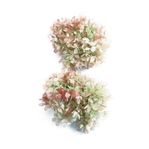 プリザーブドフラワー 花材 ソフトピラミッド アジサイ ライムロゼ 小分け 大地農園 小分け 紫陽花の画像