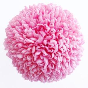 プリザーブドフラワー 花材 ポンポン菊 大 ももいろ 1輪|solargift
