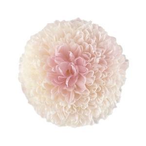 プリザーブドフラワー 菊 ポンポン菊 ミディー ホワイトピンク 小分け1輪 そらプリ solargift