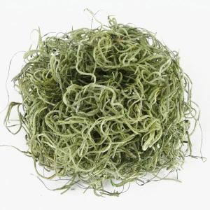 ソフトスパニッシュモス グリーン 小分け プリザーブドフラワー 材料 花材 大地農園|solargift