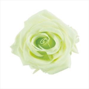 プリザーブドフラワー 花材 プチシャーロット フレッシュ グリーン 小分け 1輪 ローズ 大地農園 バラの画像